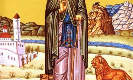 SINAXAR – 4 martie: Viaţa Preacuviosului Părintelui nostru Gherasim, cel de la Iordan († 475)