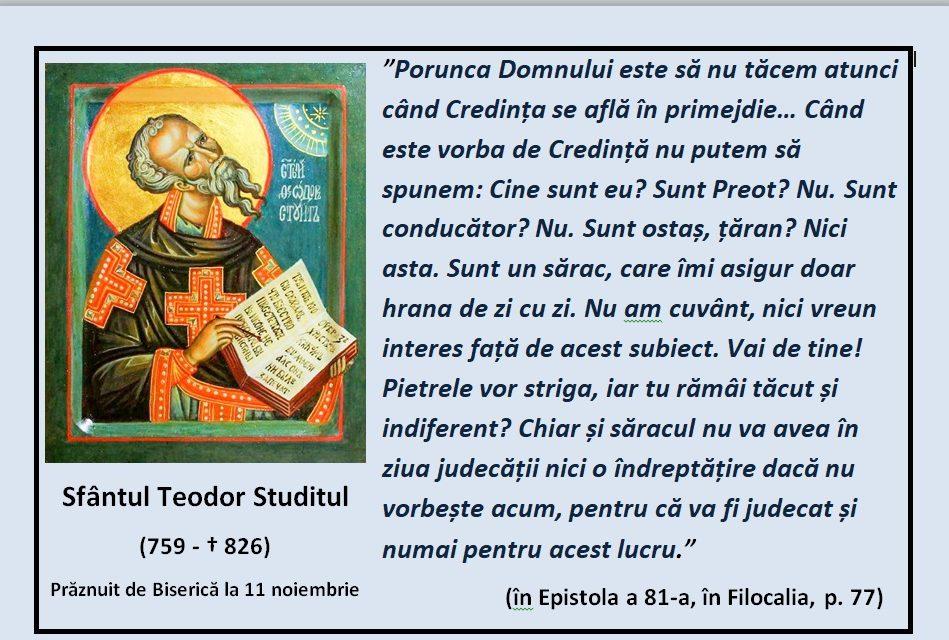 Porunca Domnului este de a nu păstratăcere – Sf. Teodor Studitul