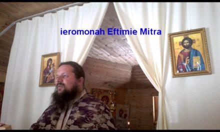 """Părintele Eftimie Mitra: Aspecte ale rezistenței ortodoxe din România față de """"sinodul"""" din Creta"""
