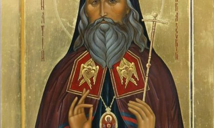 De la întristarea inimii la mângâierea lui Dumnezeu – Sf. Ignatie Briancianinov