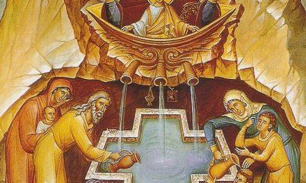 IZVORUL TĂMĂDUIRII. Predica Părintelui Sofian Boghiu