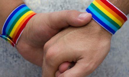 """,,PARTENERIATUL CIVIL"""" a fost SCOPUL URMĂRIT încă de la început? REFERENDUM în toamnă pentru modificarea CONSTITUŢIEI pentru INTERZICEREA căsătoriilor între HOMOSEXUALI"""