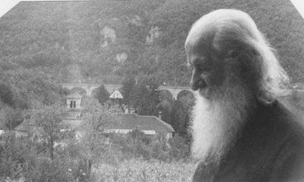 Învăţături ale Sf. Justin Popovici: Oare este sensul vieţii să devenim viermi?