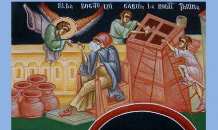 Pr. Ciprian Staicu – Predică la Duminica pildei bogatului căruia i-a rodit țarina – 19 noiembrie 2017