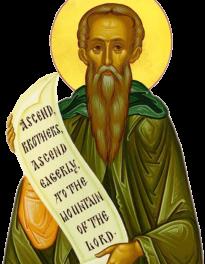 Scara sfintelor nevoințe ale desăvârșirii. Cu Sfinții, pe urmele Sfinților, având mintea lui Hristos