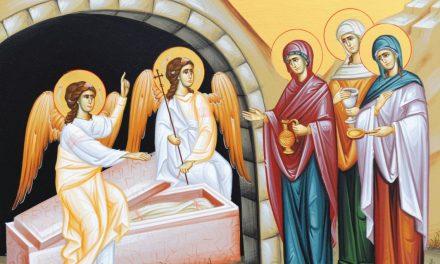 Pr. Ciprian Ioan Staicu – predică la a 2-a zi de Paști – luni 9 apr. 2018