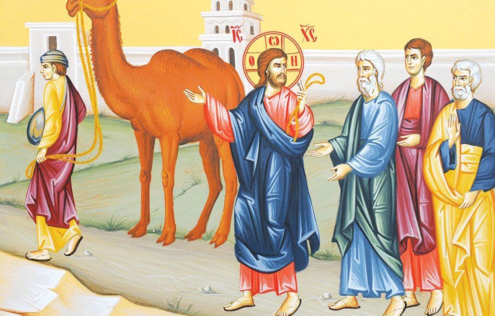 Predica Părintelui Ciprian-Ioan Staicu la Duminica a XII-a după pogorârea Sfântului Duh – Tânărul bogat