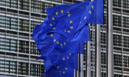 UE vrea să impună tuturor statelor membre o carte de identitate comună. Cu cip și cu STEAGUL UNIUNII