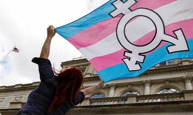Noua poliție a gândirii în acțiune: Mamă a doi copii, arestată și ținută șapte ore după gratii pentru că a numit o femeie transgender BĂRBAT