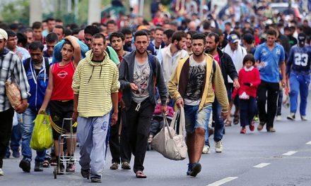 Cote obligatorii de refugiați pentru primării. Care sunt celelalte drepturi de care vor beneficia emigranții