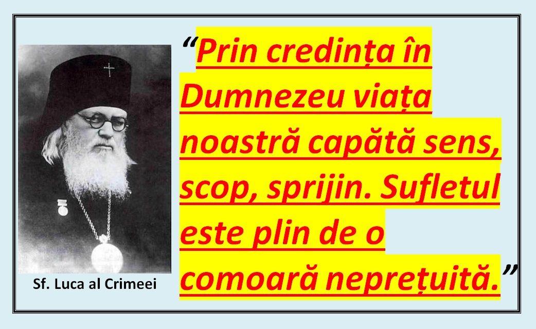 Sf. Luca al Crimeei – despre duhul iubirii de stăpânire