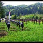 REVOLTĂTOR ! ! !: Culmea șovinismului la Valea Uzului: crucile soldaților români învelite în saci de gunoi