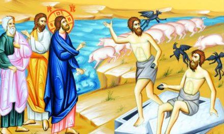 """Predica Părintelui Mina – """"Evanghelia mântuirii oamenilor și pieirii porcilor"""" – 21 iulie 2019"""