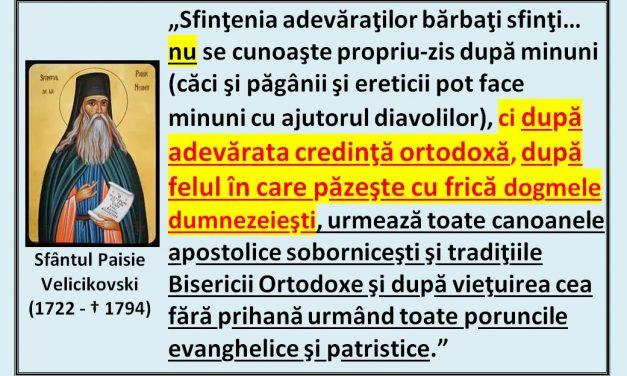 Sf. Paisie Velicikovski despre sfințenie
