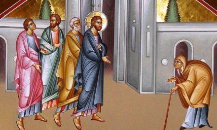 Predica Pr. Ciprian Ioan Staicu la Duminica a 27-a după POGORÂREA DUHULUI SFÂNT – 08.12.2019