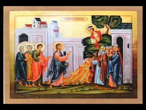 Predica Pr. Spiridon în Duminica lui Zaheu, 26.01.2020. Despre actele electronice de identitate și CNP