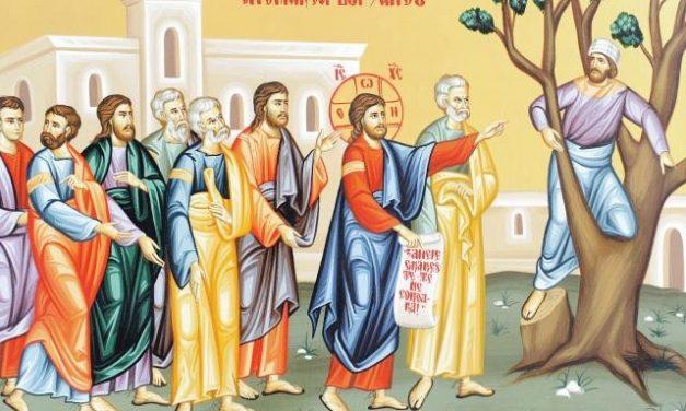 Predica Pr. Dr. Ciprian Ioan Staicu la DUMINICA lui ZAHEU – 26.01.2020