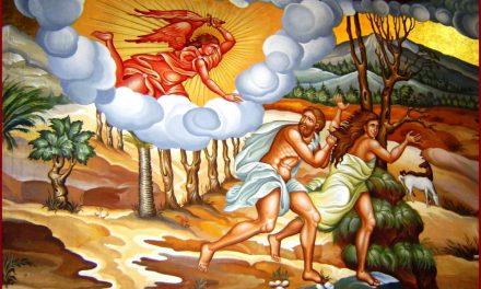 Predica Pr. Dr. Ciprian Ioan Staicu la Duminica izgonirii lui Adam din Rai – 01.03.2020
