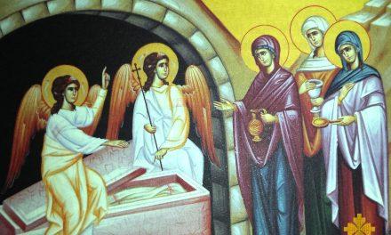 Predica Părintelui Ciprian Ioan Staicu la Duminica Mironosițelor – 3 mai 2020