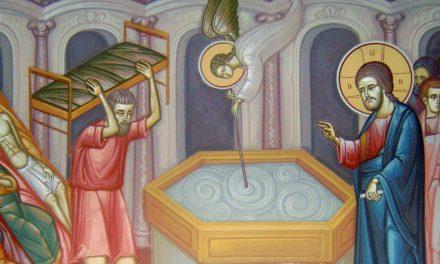 Predica Părintelui Ieronim la Duminica Vindecării slăbănogului de la Vitezda – 10 mai 2020
