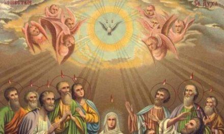 Predica Părintelui Ciprian Ioan Staicu la Pogorârea Duhului Sfânt – 7 iunie 2020