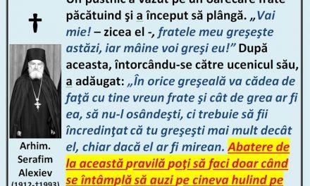 Arhim. Serafim Alexiev: Singura osândire îngăduită – erezia