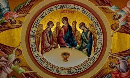 Predica Părintelui Ieronim la Praznicul Sfintei Treimi – 8 iunie 2020
