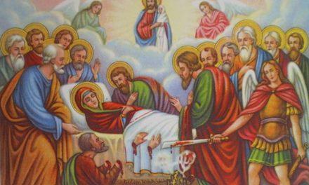 Predica Părintelui Ieronim la Praznicul Adormirii Maicii Domnului – 15 august 2020