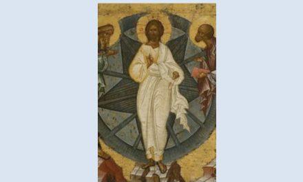 În sprijinul părinților români care, ca un alt val de mărturisire ortodoxă, vor să se îngrădească de ereticii ecumeniști