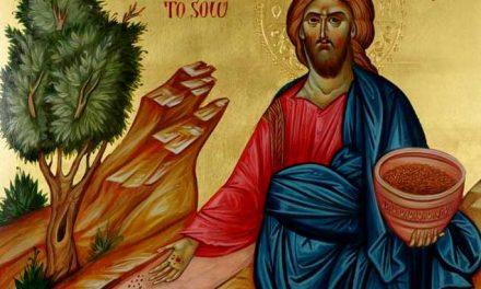 Părintele Antonie – Predică la Pilda Semănătorului – 11 octombrie 2020