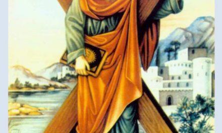 Predica Părintelui Andrei la Praznicul Sfântului Apostol Andrei – 30 noiembrie 2020