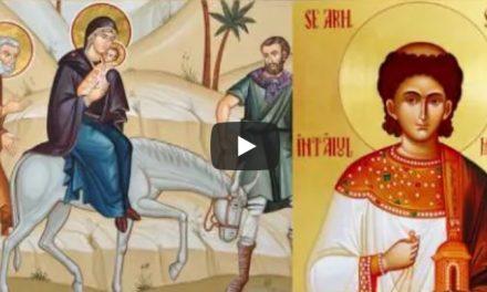Predica Părintelui Antonie la Duminica după Nașterea Domnului (Fuga în Egipt); Sfântul Arhidiacon Ștefan – 27 decembrie 2020