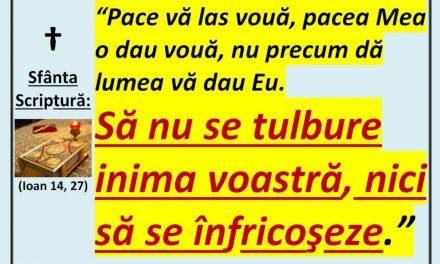 Contrar lui Hristos care ne dăruiește Pacea, credința, calmul, discernământul – spre viață, spre înțelepciune, spre sfințire, spre mântuire, statul masonic (satanist/ antihrist), stăpânit de duhuri necurate, caută să ne îndoape cu cât mai multă frică, stres – spre îndrăcire, spre moarte… (video)