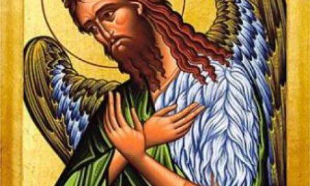 Predica Părintelui Xenofont de Sărbătoarea Sfântului Ioan Botezătorul, 7 ianuarie 2021
