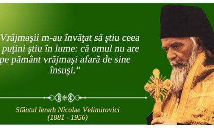 Cuvinte ziditoare de suflet de la Sfântul Nicolae Velimirovici