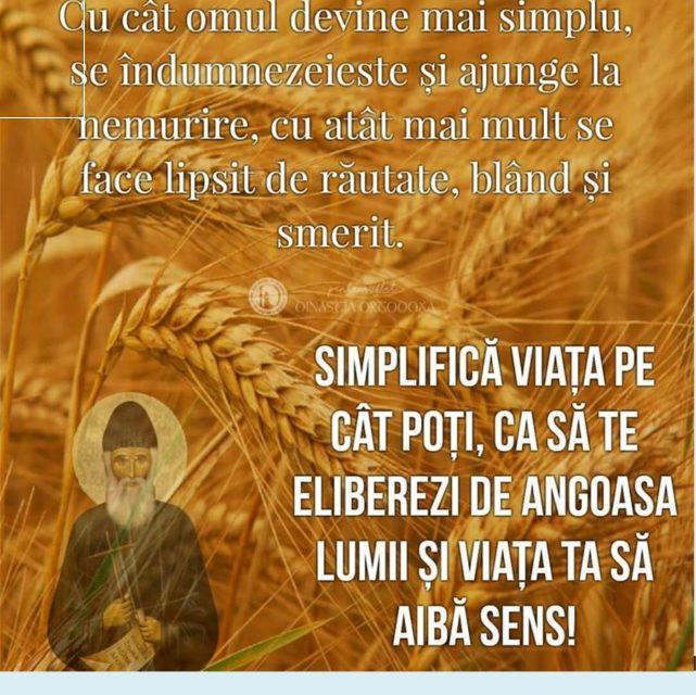 """""""Simplificați-vă viața, și stresul va fugi"""" – Sfântul Paisie Aghioritul"""