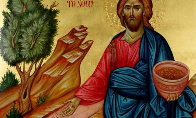 Predica Părintelui Ieronim la Duminica Părinților de la Sinodul VII Ecumenic (Pilda Semănătorului) – 17 octombrie 2021